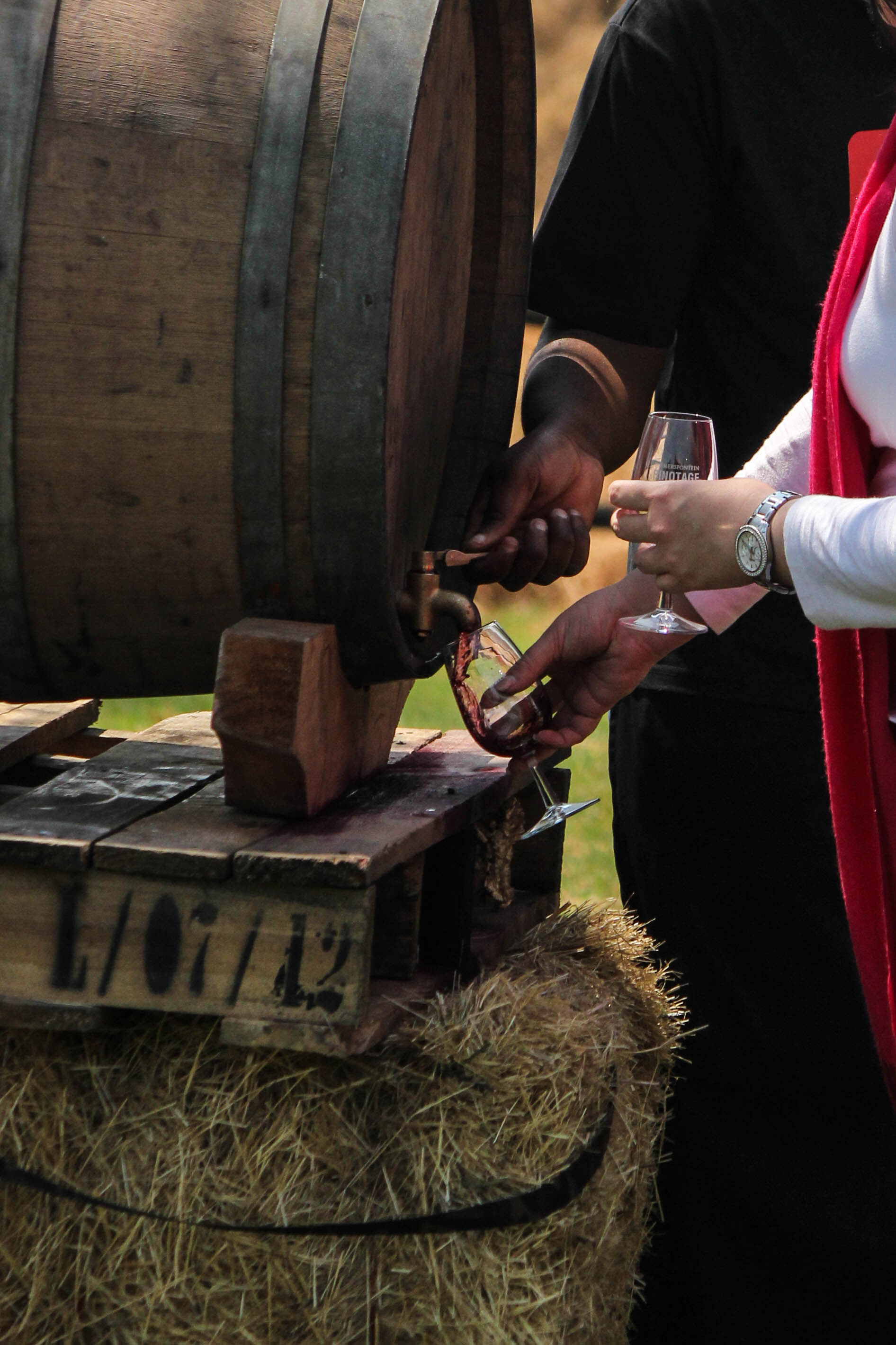 Event: Pinotage on Tap Wine Festival 2015