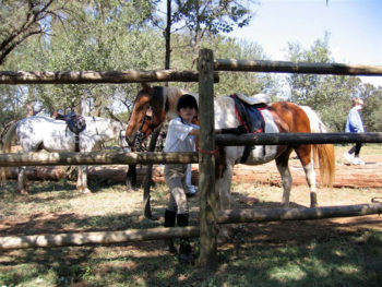 Hollybrooke-Farms-Horse-Trails
