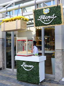 Why We Love The Flora Blend Bar