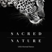 Win A Gorgeous Coffee Table Book, Valued At Over R900!