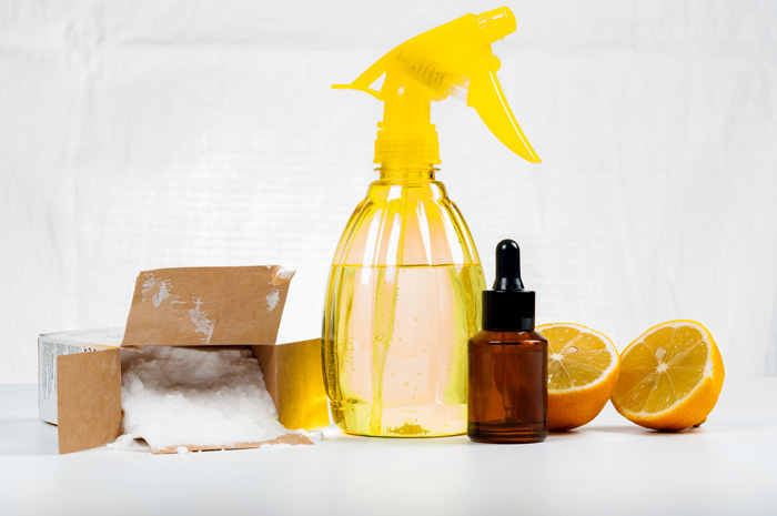 11 Natural Spring Cleaning Tips