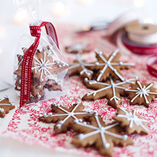 iced and spiced christmas biscuits