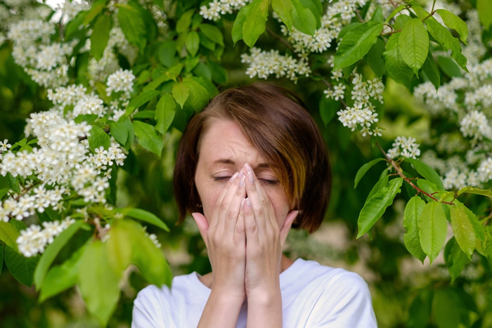 The Benefits Of Essential Oils For Allergies