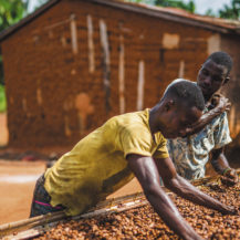 Cocoa Life: Improving The Lives Of Farmers