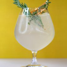 Refreshing Summer Gin And Tonic Recipe